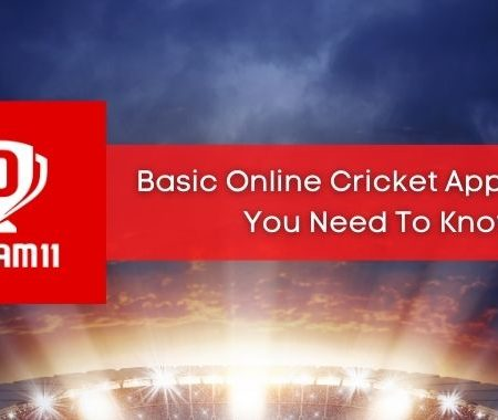 Dream 11 to Basic Online Cricket App, What Do You Need To Know?